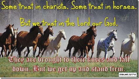 Psalms 20_7-8